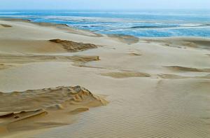 La Dune du Pilat et le bassin d'Arcachon, à 1h de Bordeaux