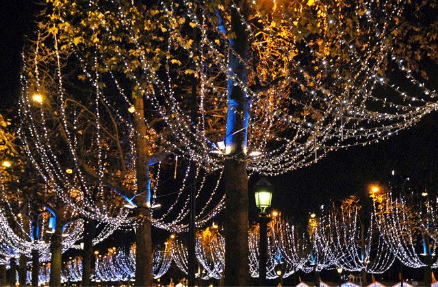Arbres illuminés Champs Elysées Paris