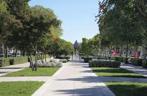 Avenue Feuchère Nîmes